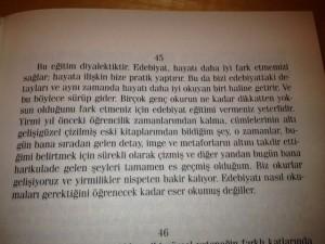 edebiyat 2